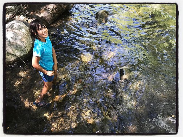 Skipping stones on a stream. #familytime