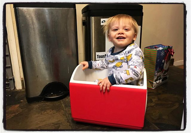 This little guy has captured our hearts. Not sure why he and the cats like sitting in boxes, but there you go. #dadlife