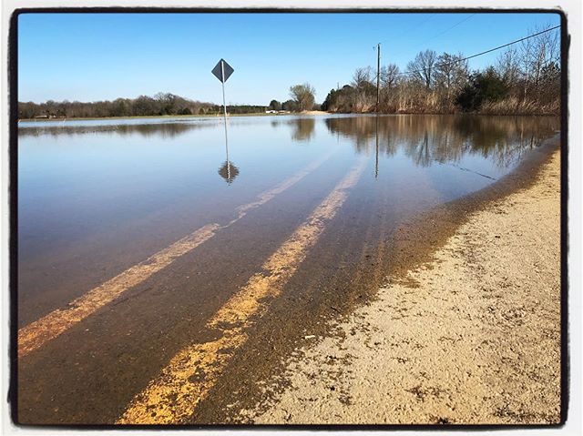 And I left my aqua car at home. Flooding in the Delta. #meekjournalism #meekjourno