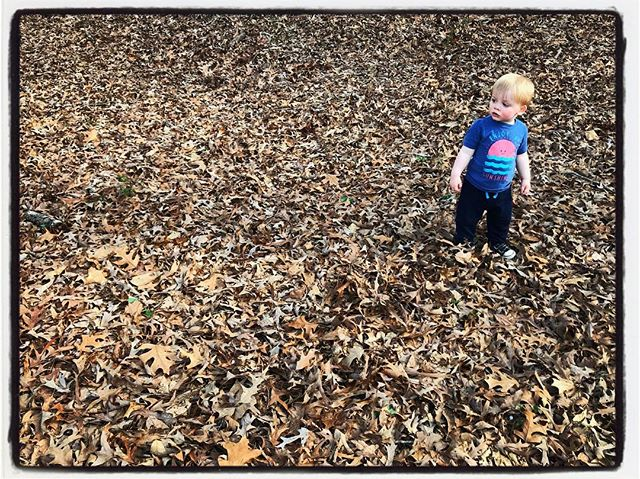 Exploring our world (Avent Park), Oxford. #dadlife